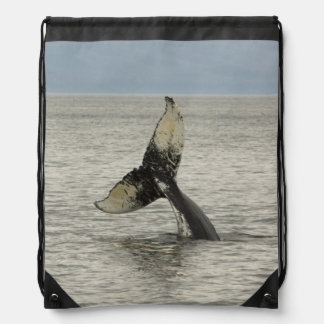North America, USA, AK, Inside Passage. Humpback Drawstring Bag