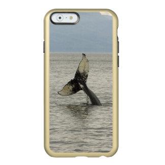 North America, USA, AK, Inside Passage. Humpback Incipio Feather® Shine iPhone 6 Case