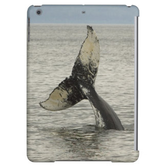 North America, USA, AK, Inside Passage. Humpback iPad Air Covers