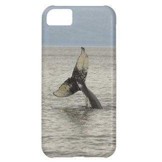 North America, USA, AK, Inside Passage. Humpback iPhone 5C Cases