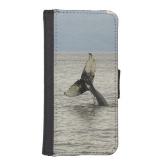 North America, USA, AK, Inside Passage. Humpback iPhone SE/5/5s Wallet Case