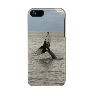 North America, USA, AK, Inside Passage. Humpback Metallic Phone Case For iPhone SE/5/5s