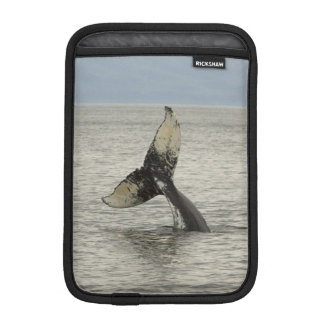 North America, USA, AK, Inside Passage. Humpback Sleeve For iPad Mini