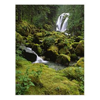 North America, USA, Alaska. A waterfall and Postcard