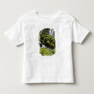 North America, USA, Alaska. A waterfall and Toddler T-shirt