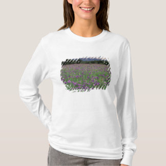 North America, USA, Alaska, Anchorage, Eklutna T-Shirt