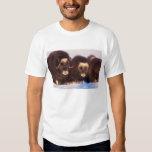 North America, USA, Alaska, Arctic Circle, Tee Shirts