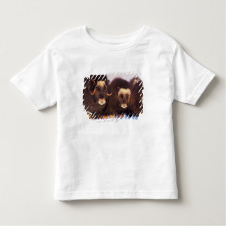 North America, USA, Alaska, Arctic Circle, Toddler T-shirt