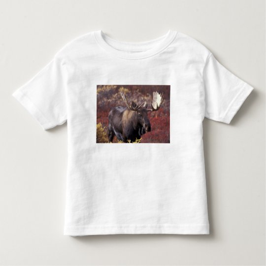 North America, USA, Alaska, Denali NP. Alces Toddler T-shirt