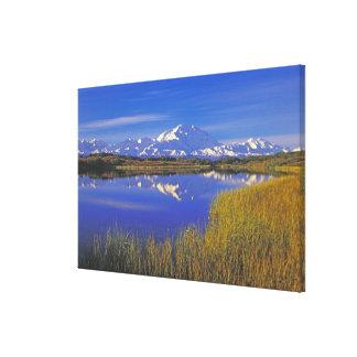 North America, USA, Alaska, Denali NP, Gallery Wrap Canvas