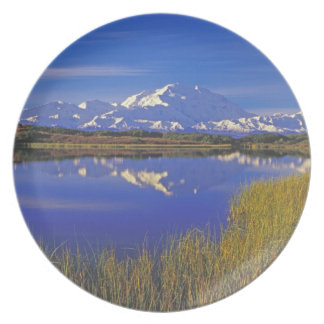 North America, USA, Alaska, Denali NP, Dinner Plate