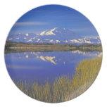 North America, USA, Alaska, Denali NP, Dinner Plates
