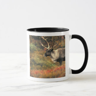 North America, USA, Alaska, Denali NP, Tundra. Mug