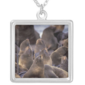 North America, USA, Alaska. Endangered Silver Plated Necklace
