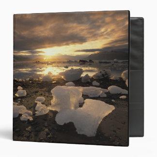 North America, USA, Alaska, Ice Bay, Icescape, Vinyl Binders
