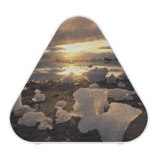 North America, USA, Alaska, Ice Bay, Icescape, Bluetooth Speaker