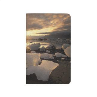 North America, USA, Alaska, Ice Bay, Icescape, Journal