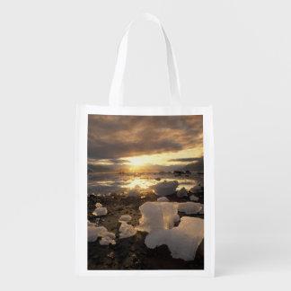 North America USA Alaska Ice Bay Icescape Reusable Grocery Bags