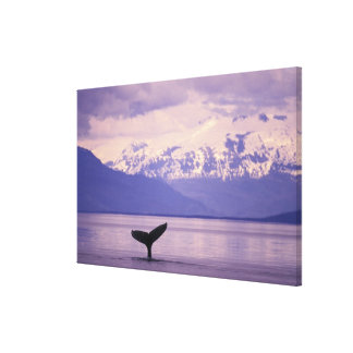 North America, USA, Alaska, Inside Passage. Canvas Print
