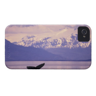 North America, USA, Alaska, Inside Passage. iPhone 4 Case-Mate Cases