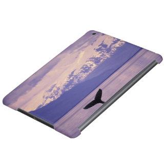 North America, USA, Alaska, Inside Passage. iPad Air Cases