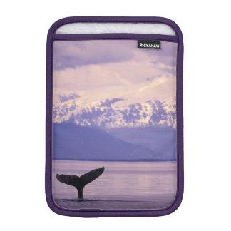 North America, USA, Alaska, Inside Passage. iPad Mini Sleeve