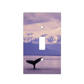 North America, USA, Alaska, Inside Passage. Light Switch Cover