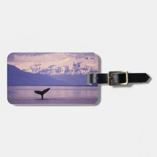 North America, USA, Alaska, Inside Passage. Luggage Tag