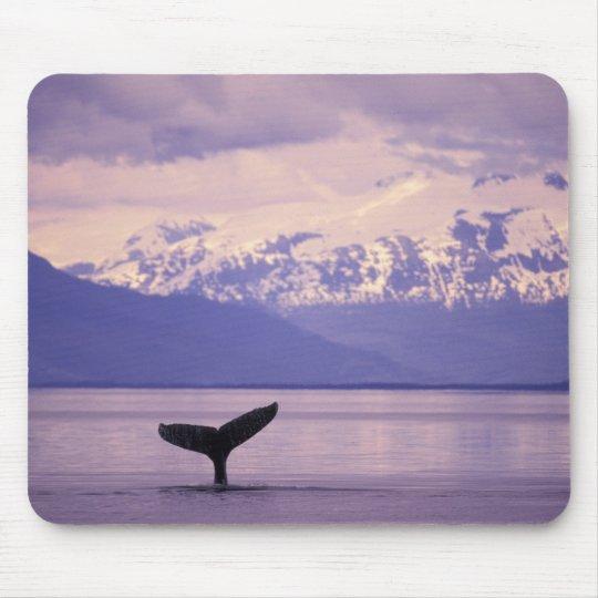 North America, USA, Alaska, Inside Passage. Mouse Pad