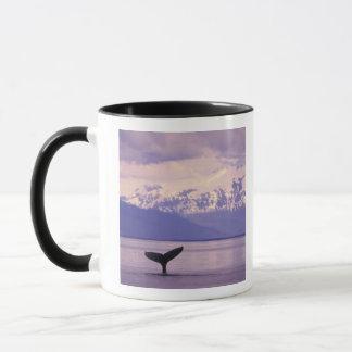 North America, USA, Alaska, Inside Passage. Mug