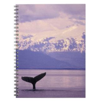 North America, USA, Alaska, Inside Passage. Note Books