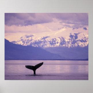 North America, USA, Alaska, Inside Passage. Poster
