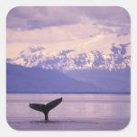 North America, USA, Alaska, Inside Passage. Square Sticker