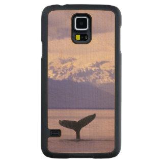 North America, USA, Alaska, Inside Passage. Carved® Maple Galaxy S5 Slim Case