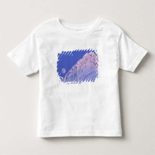 North America, USA, Alaska, Knik River, Toddler T-shirt