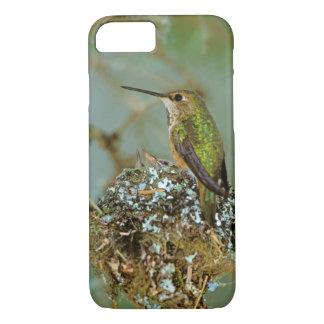 North America, USA, Alaska. Rufous Humming bird iPhone 7 Case