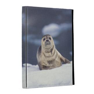 North America, USA, Alaska, S.E., Le Conte iPad Folio Cases