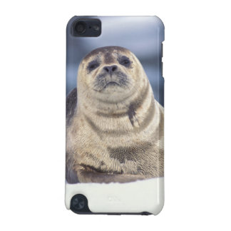 North America, USA, Alaska, S.E., Le Conte iPod Touch (5th Generation) Cases