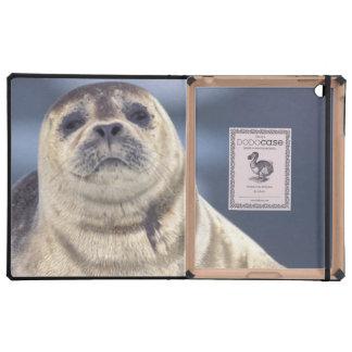 North America, USA, Alaska, S.E., Le Conte Case For iPad