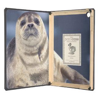 North America, USA, Alaska, S.E., Le Conte iPad Air Case