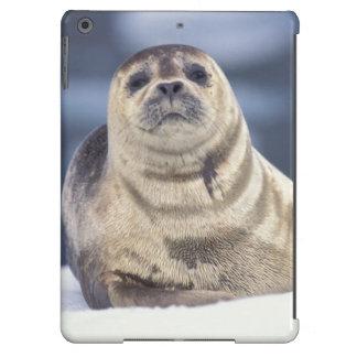 North America, USA, Alaska, S.E., Le Conte iPad Air Cover