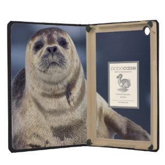 North America, USA, Alaska, S.E., Le Conte iPad Mini Retina Cover