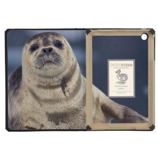 North America, USA, Alaska, S.E., Le Conte iPad Mini Retina Cases