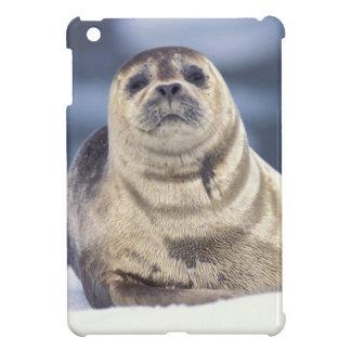 North America, USA, Alaska, S.E., Le Conte iPad Mini Cases
