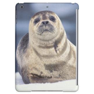 North America, USA, Alaska, S.E., Le Conte iPad Air Covers