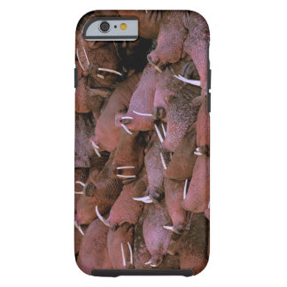 North America, USA, Alaska, Yukon Delta National Tough iPhone 6 Case