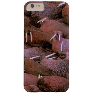 North America, USA, Alaska, Yukon Delta National Barely There iPhone 6 Plus Case