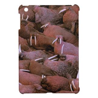 North America, USA, Alaska, Yukon Delta National Cover For The iPad Mini
