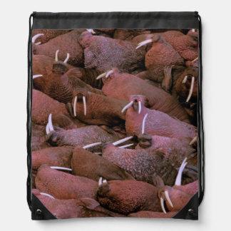 North America, USA, Alaska, Yukon Delta National Drawstring Bag
