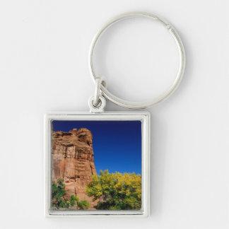 North America, USA, Arizona, Navajo Indian 3 Key Chain